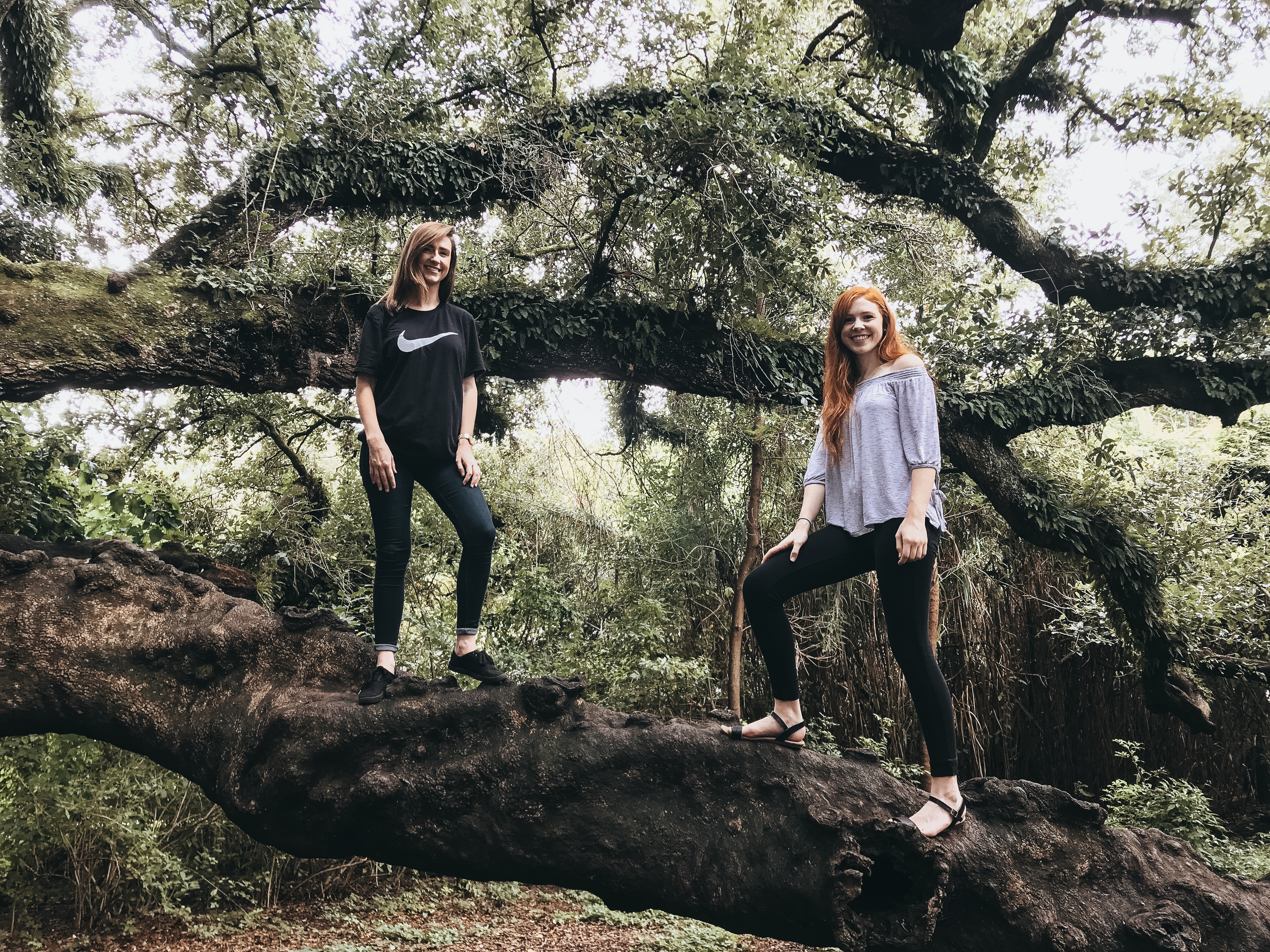 standing on tree