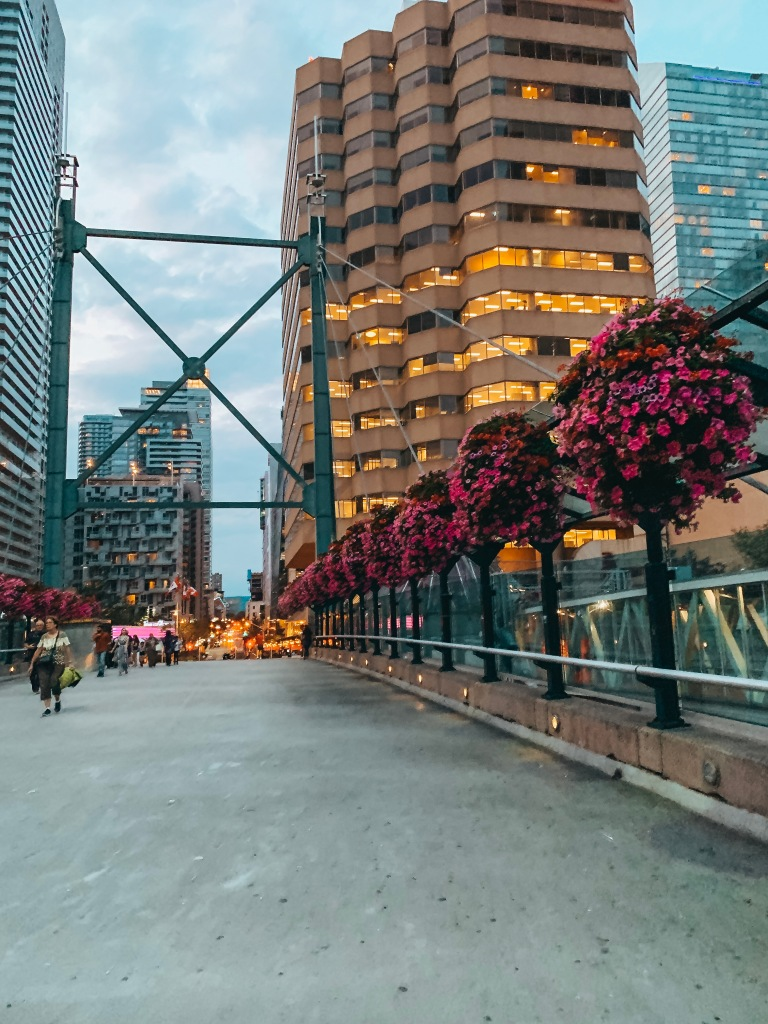 Toronto Bridge Walk